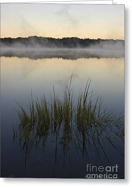 Morning Mist At Sunrise Greeting Card