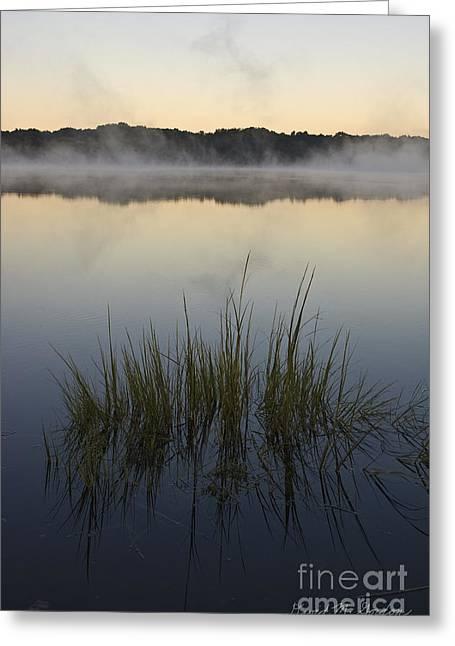 Morning Mist At Sunrise Greeting Card by David Gordon
