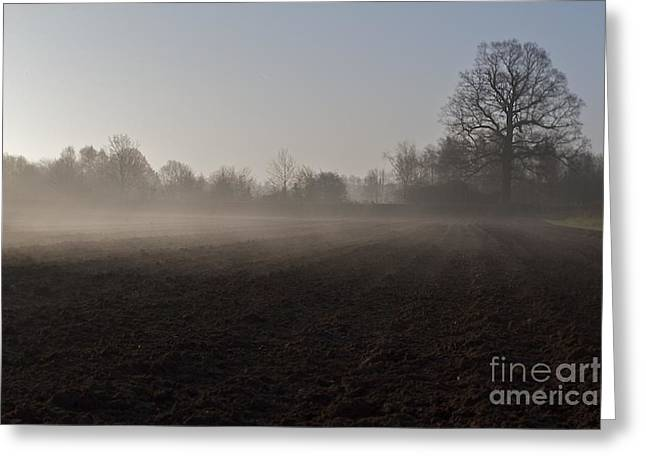 Greeting Card featuring the photograph Morning Mist  by Gary Bridger