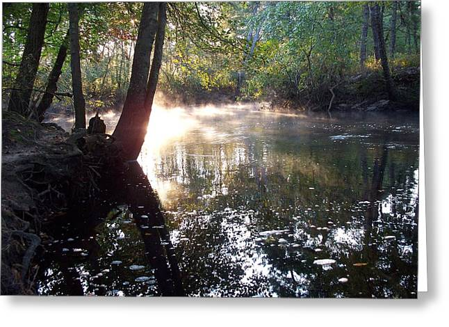 Morning Mist On The River  Greeting Card
