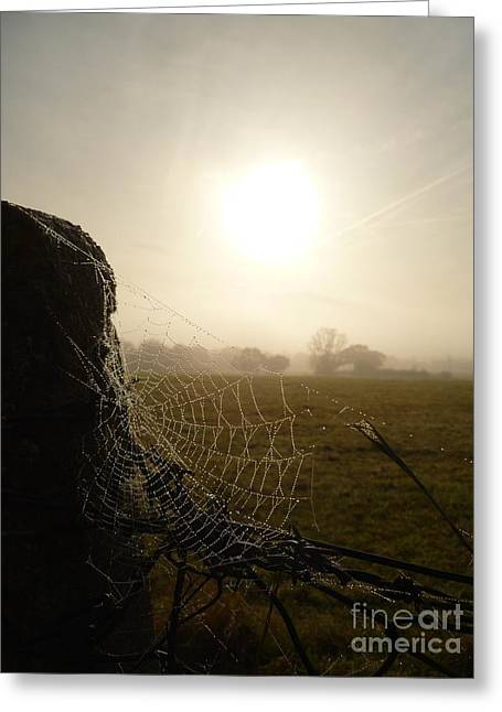 Greeting Card featuring the photograph Morning Mist by Vicki Spindler