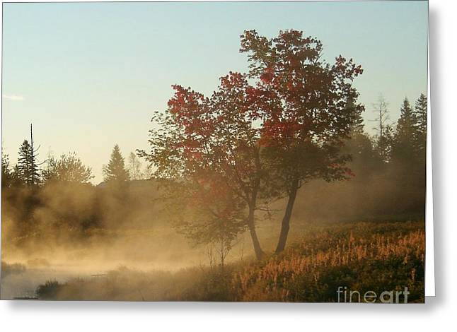 Morning On Middle River Greeting Card