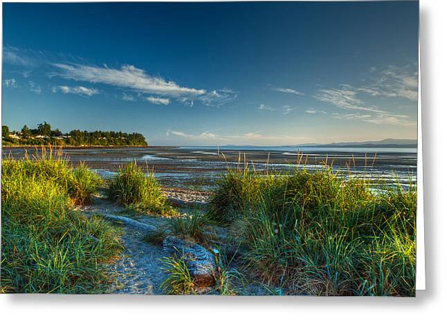 Morning On The Beach Greeting Card by Randy Hall