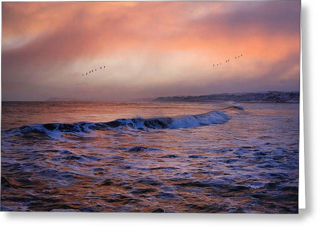 Morning On The Coast Greeting Card by Roy  McPeak