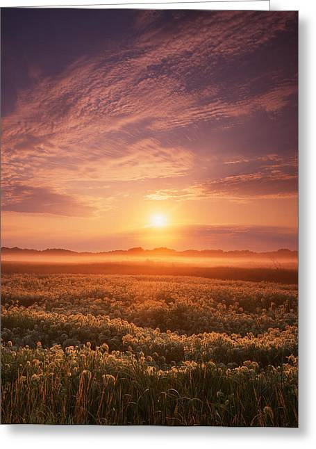 Morning On The Fen Greeting Card by Ray Mathis