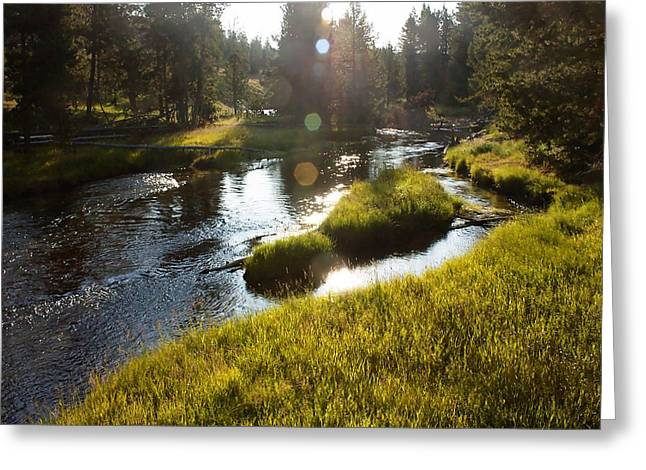 Morning On The Firehole Greeting Card