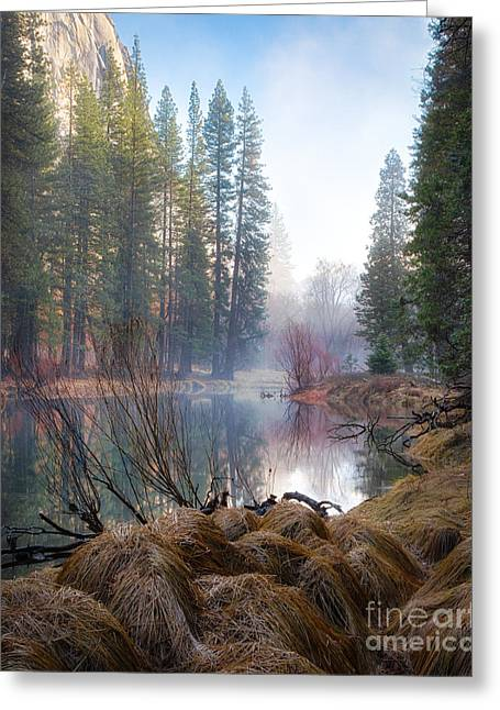 Morning On The Merced Greeting Card