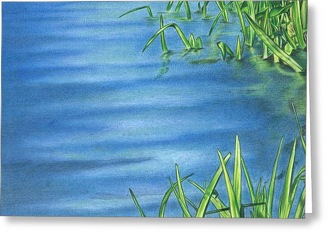 Morning On The Pond Greeting Card