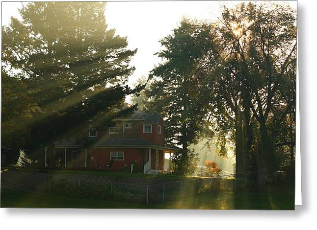 Greeting Card featuring the photograph Morning Rays by Lynn Hopwood