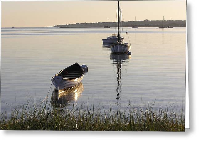 Morning Reflections Greeting Card by Richard Mansfield