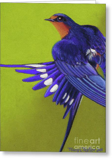 Morning Ritual Barn Swallow Greeting Card by Tracy L Teeter