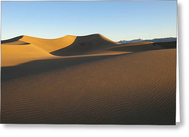 Greeting Card featuring the photograph Morning Shadows by Joe Schofield
