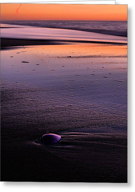 Morning Solitude  Greeting Card by JC Findley