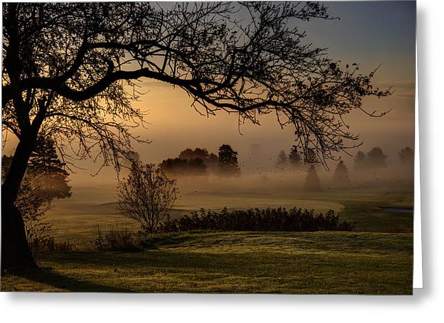 Morning Valley Fog Greeting Card by Don Powers