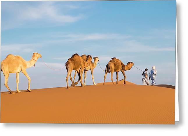 Morocco, Erg Chegaga (or Chigaga Greeting Card