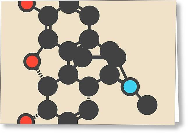 Morphine Pain Drug Molecule Greeting Card by Molekuul