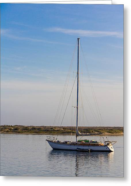 Sailboat At Anchor In Morro Bay Greeting Card