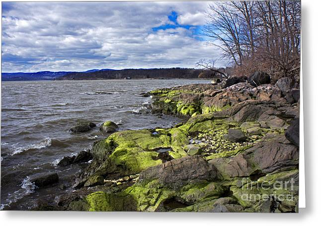 Moss Along The Hudson River Greeting Card