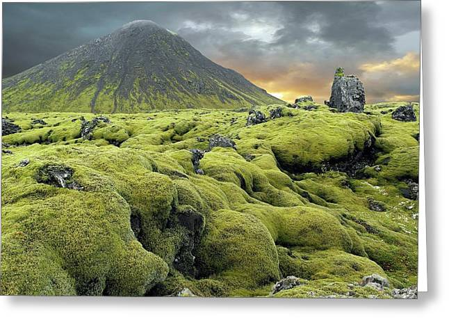 Moss-covered Lava Field Greeting Card by Tony Craddock