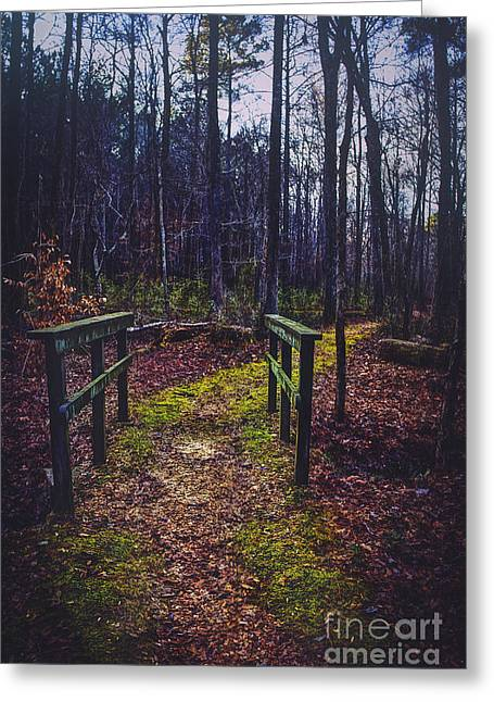 Moss Covered Path Greeting Card