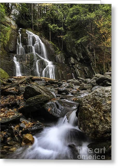 Moss Glen Falls Greeting Card by Thomas Schoeller