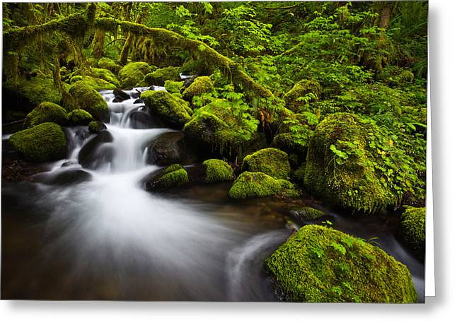Mossy Arch Cascade Greeting Card by Darren  White
