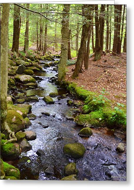 Mossy Brook Greeting Card
