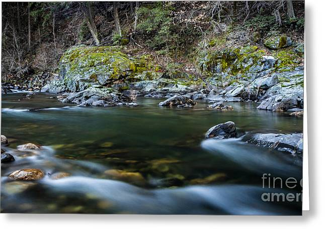 Mossy Rocks Greeting Card by Mitch Shindelbower