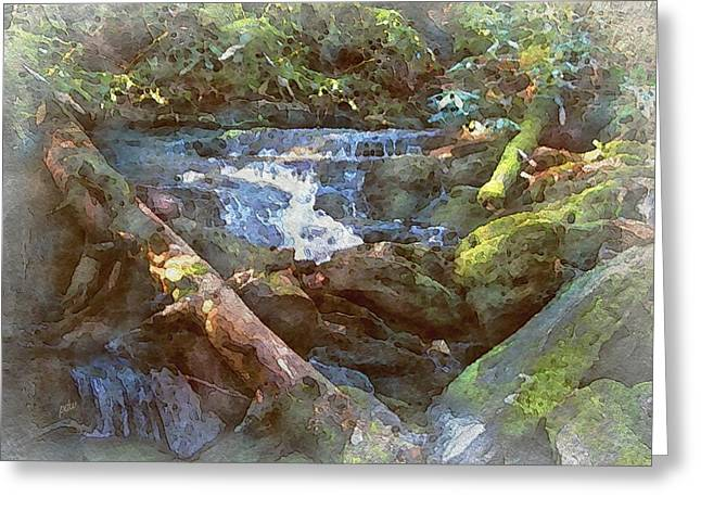 Mossy Smoky Mountain Stream Greeting Card by Philip White