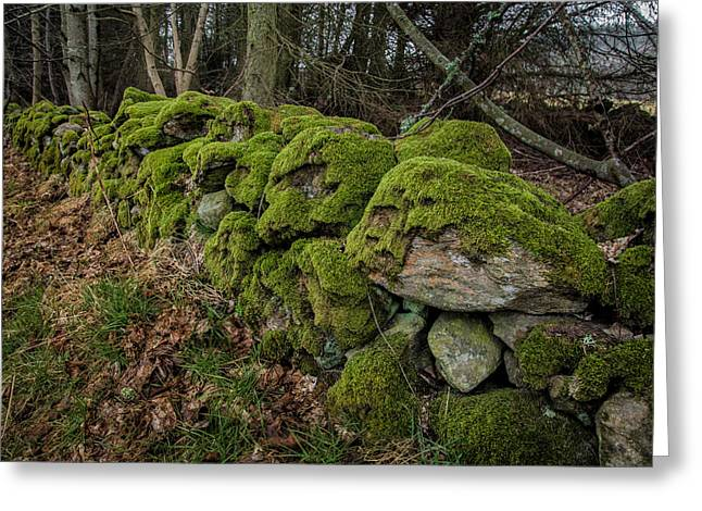 Mossy Stone Fence Greeting Card