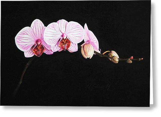 Moth Orchid Greeting Card by Marna Edwards Flavell