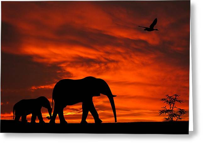 Mother And Baby Elephants Sunset Silhouette Series Greeting Card by David Dehner