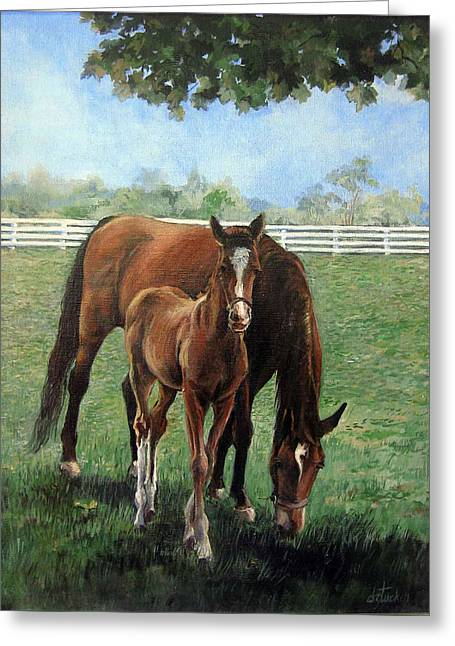 Mother And Colt Greeting Card by Donna Tucker