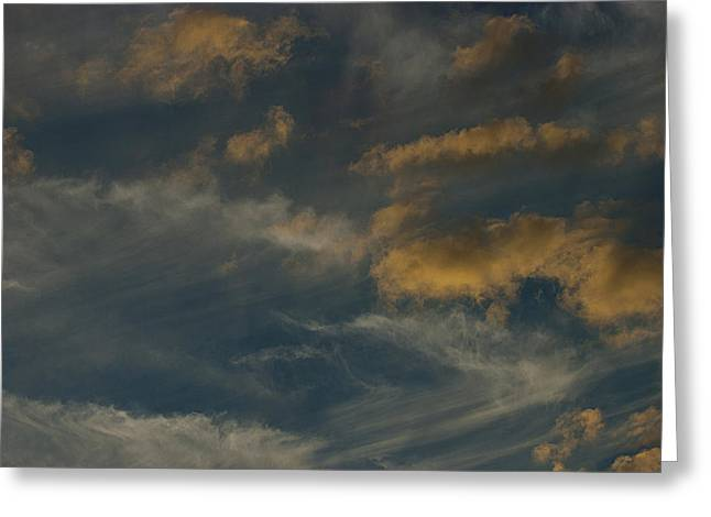 Mother Natures Art S-xix Greeting Card by Sean Holmquist