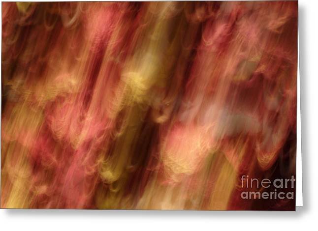 Motion Series - 218 Greeting Card by Paul W Faust -  Impressions of Light