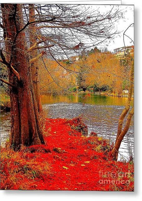 Moulin De Chasseigne Greeting Card by Jessie Art