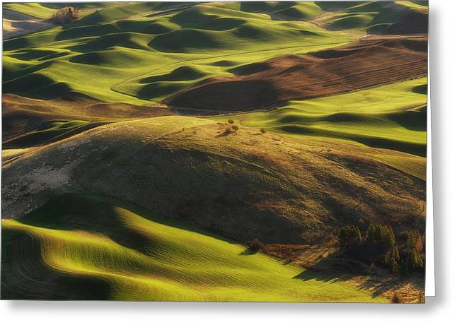 Mounds Of Joy Greeting Card by Ryan Manuel