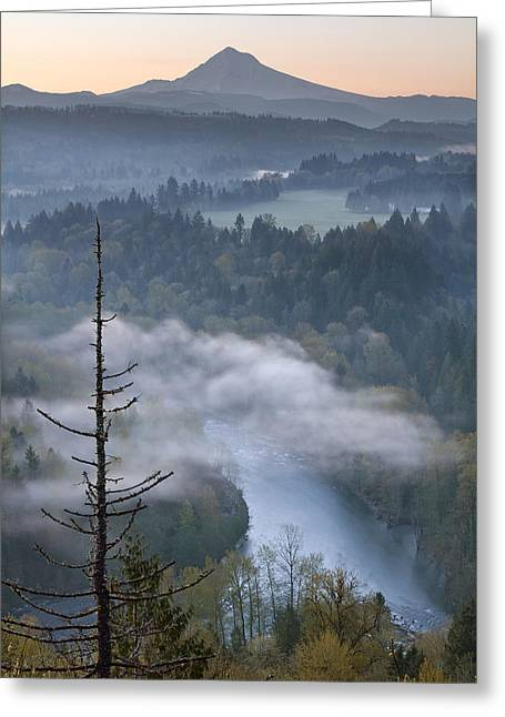 Mount Hood And Sandy River At Sunrise Greeting Card