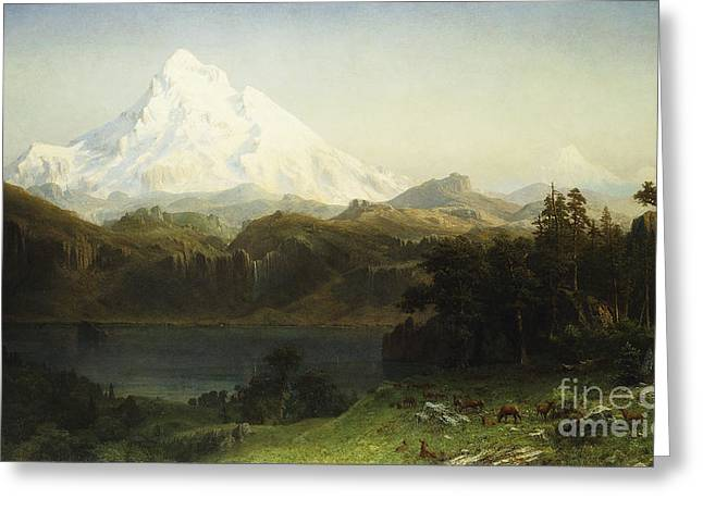 Mount Hood In Oregon Greeting Card by Albert Bierstadt