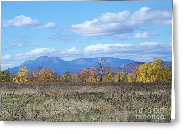 Mount Katahdin From Stacyville Greeting Card by Joseph Marquis