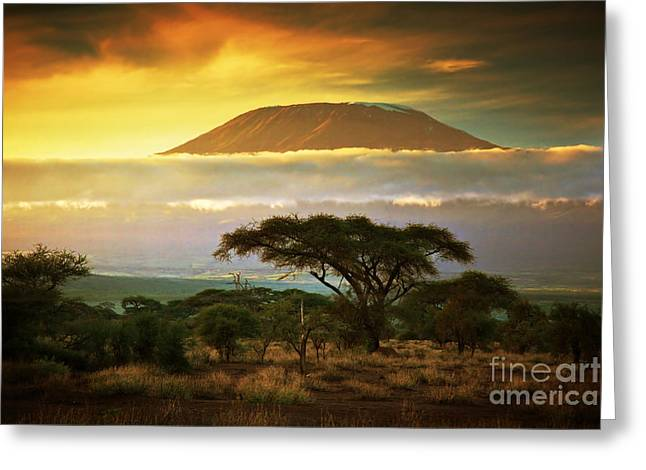 Mount Kilimanjaro Savanna In Amboseli Kenya Greeting Card by Michal Bednarek