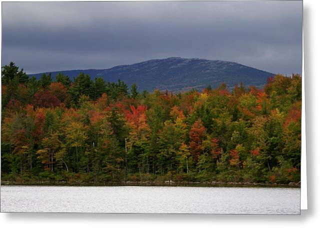Mount Monadnock Fall 2013 View 2 Greeting Card by Lois Lepisto