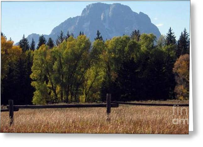 Greeting Card featuring the photograph Mount Moran by Janice Westerberg