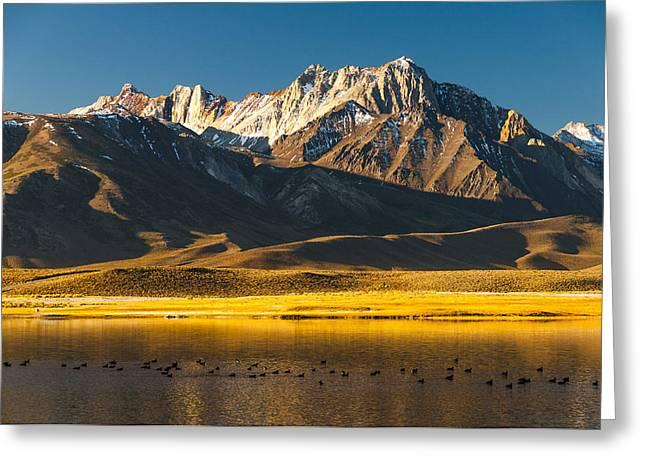 Mount Morrison At Sunrise Greeting Card by Joe Doherty