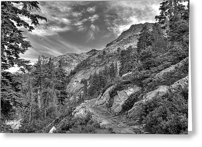Mount Pilchuck Black And White Greeting Card