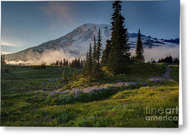 Mount Rainier Evening Fog Greeting Card