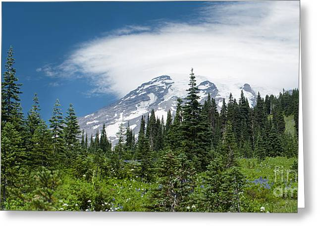 Mount Rainier Forest Greeting Card