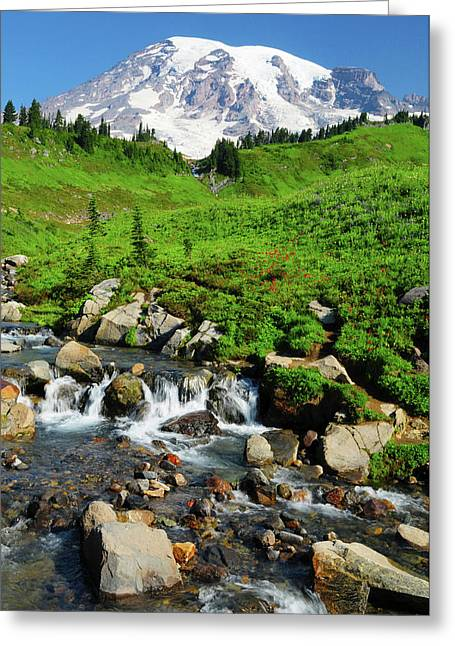 Mount Rainier From Paradise Greeting Card