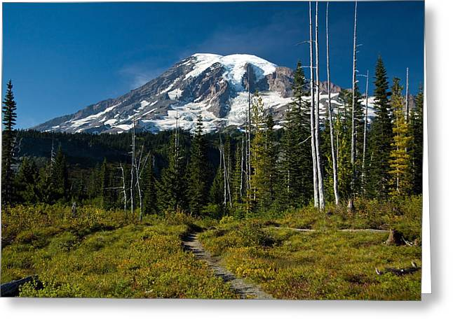 Greeting Card featuring the photograph Mount Rainier From Snow Lake Trail by Bob Noble Photography