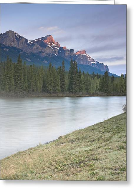 Mount Rundle And The Bow River At Sunrise Greeting Card by Richard Berry